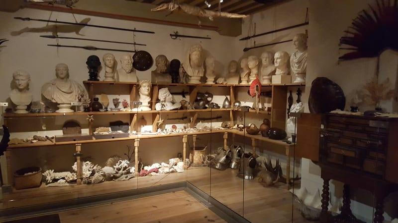 Tropische Sammlung Rembrand