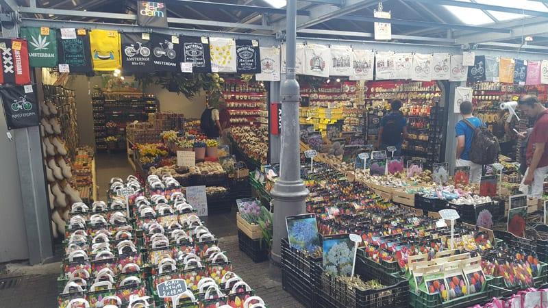 https://www.xn--amsterdamsehenswrdigkeiten-e0c.de/wp-content/uploads/2016/06/blumenmarkt-20160908_112743.jpg